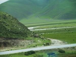 川藏线上到处都是美景