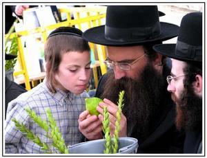 犹太人优秀的家庭教育