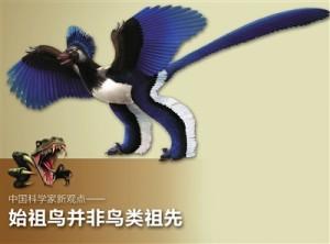始祖鸟并非鸟类祖先