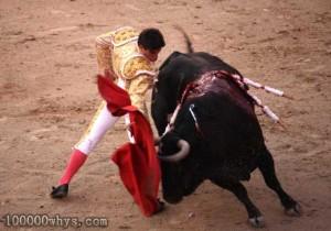 西班牙人为什么喜欢斗牛?