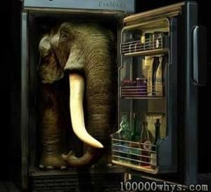 把大象装冰箱分几步
