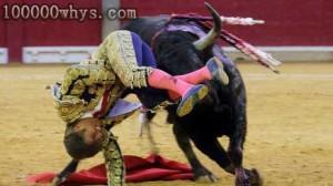 危险的斗牛表演