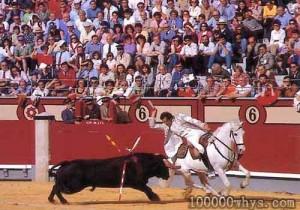 观看斗牛的人们