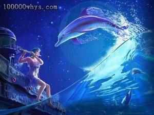 十万个为什么-海豚救人
