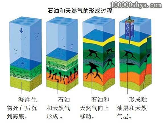 石油_石油是如何形成的?