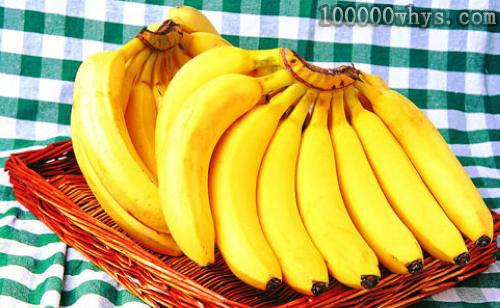 为什么香蕉没有种子