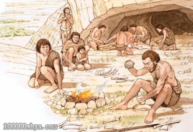 人类何时学会制造工具和用火