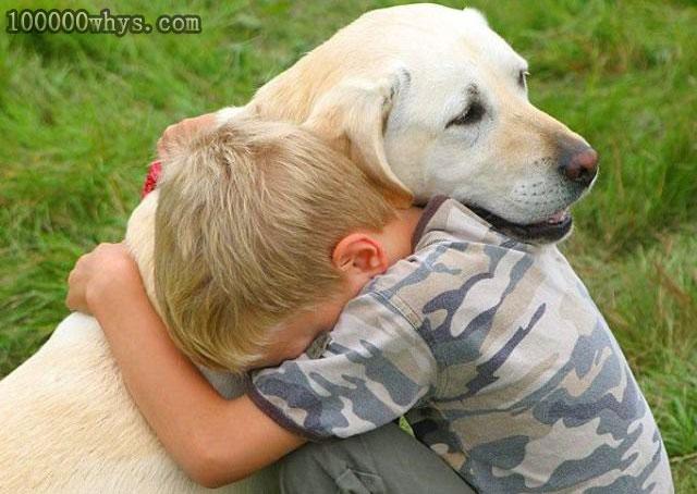 狗为什么和人那么亲密