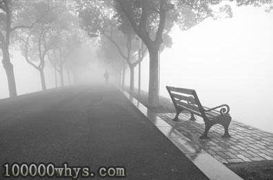 """为什么把雾称为海陆空的""""无形杀手"""""""